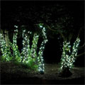 Garden lights image 3