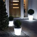 Outdoor tree lighting image 5