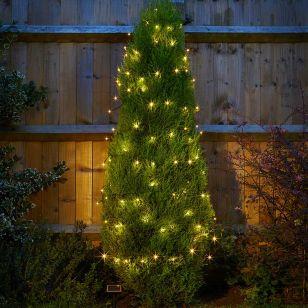 Solar Warm White LED String Lights - 50 Lights