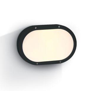 Guard Outdoor Oval Flush Light - Black