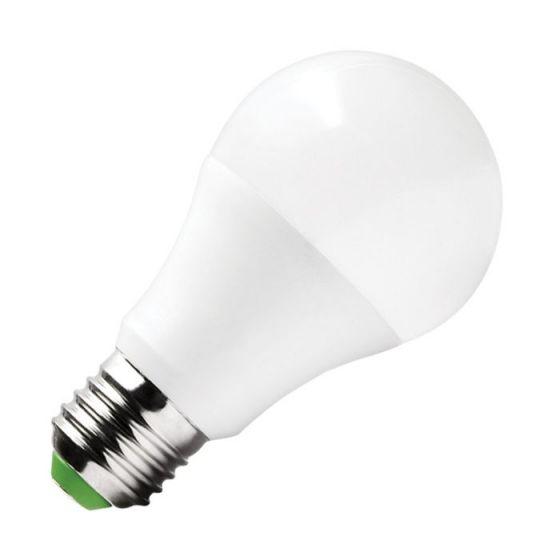Lyco Value 10W Warm White LED GLS Bulb - Screw Cap